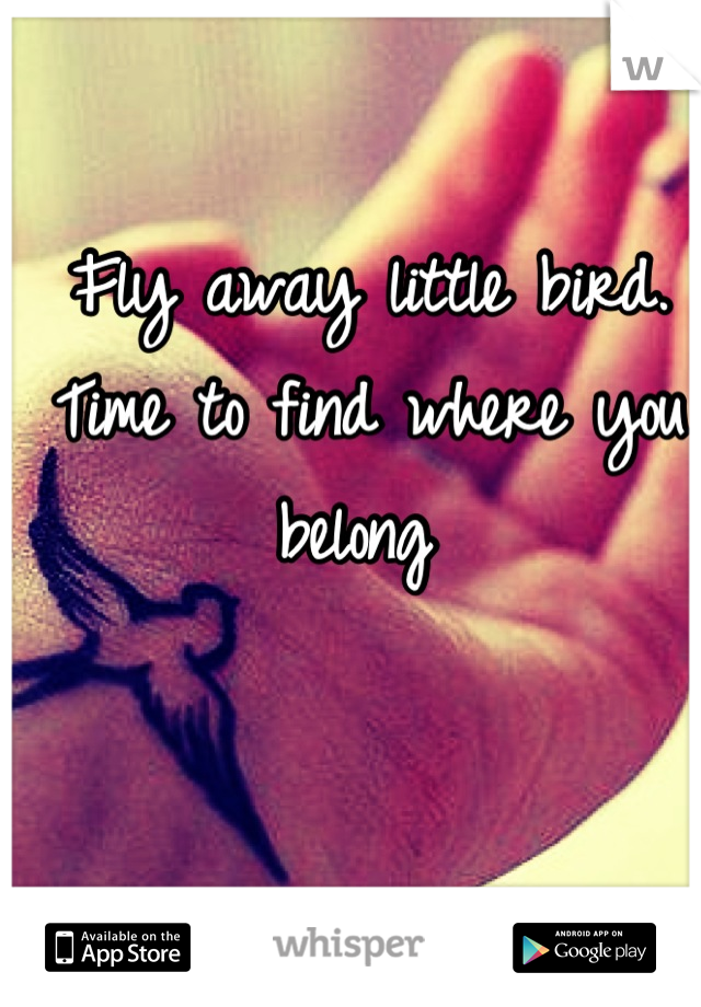 Fly away little bird. Time to find where you belong