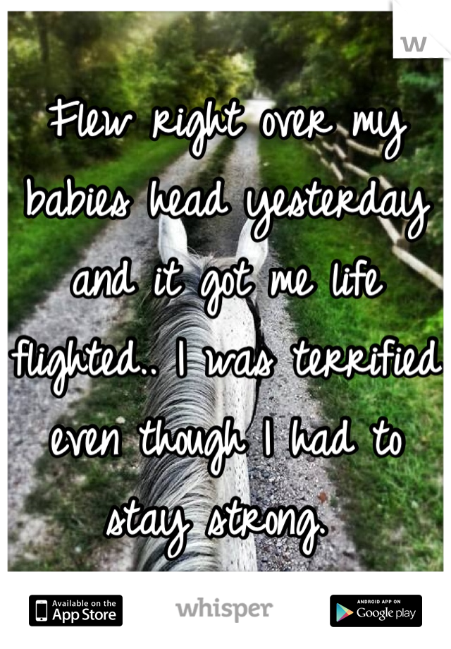 Flew right over my babies head yesterday and it got me life flighted.. I was terrified even though I had to stay strong.