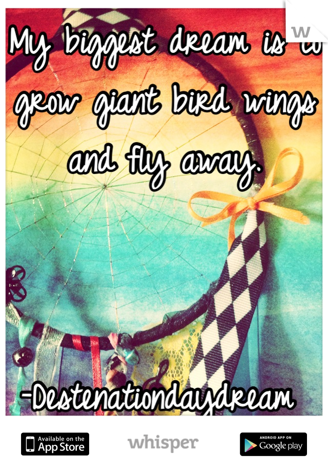 My biggest dream is to grow giant bird wings and fly away.    -Destenationdaydream