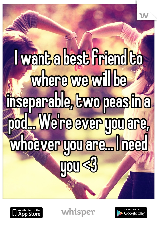 I want a best friend to where we will be inseparable, two peas in a pod... We're ever you are, whoever you are... I need you <3