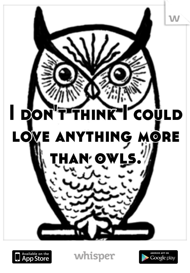I don't think I could love anything more than owls.