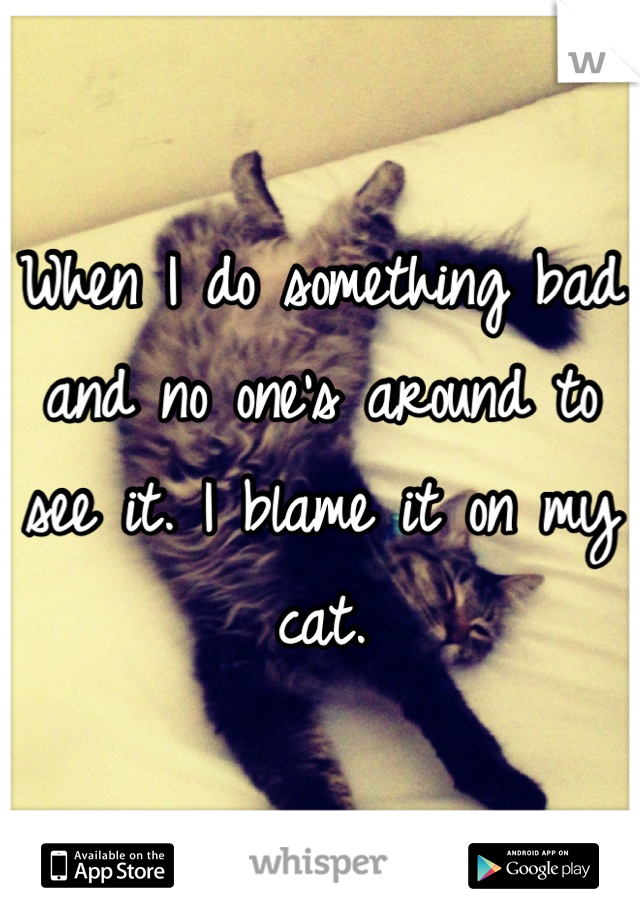 When I do something bad and no one's around to see it. I blame it on my cat.
