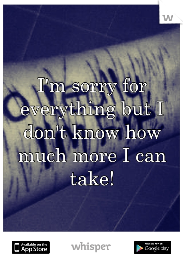 I'm sorry for everything but I don't know how much more I can take!