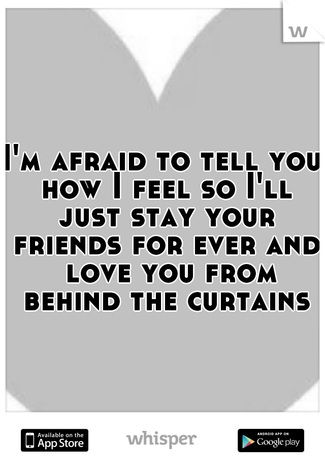 I'm afraid to tell you how I feel so I'll just stay your friends for ever and  love you from behind the curtains