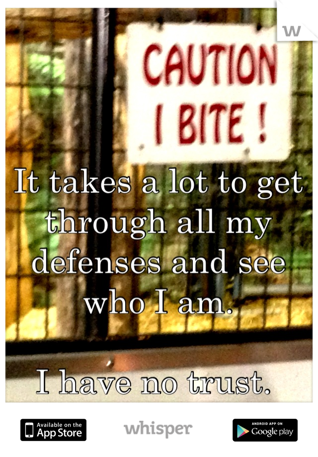 It takes a lot to get through all my defenses and see who I am.    I have no trust.