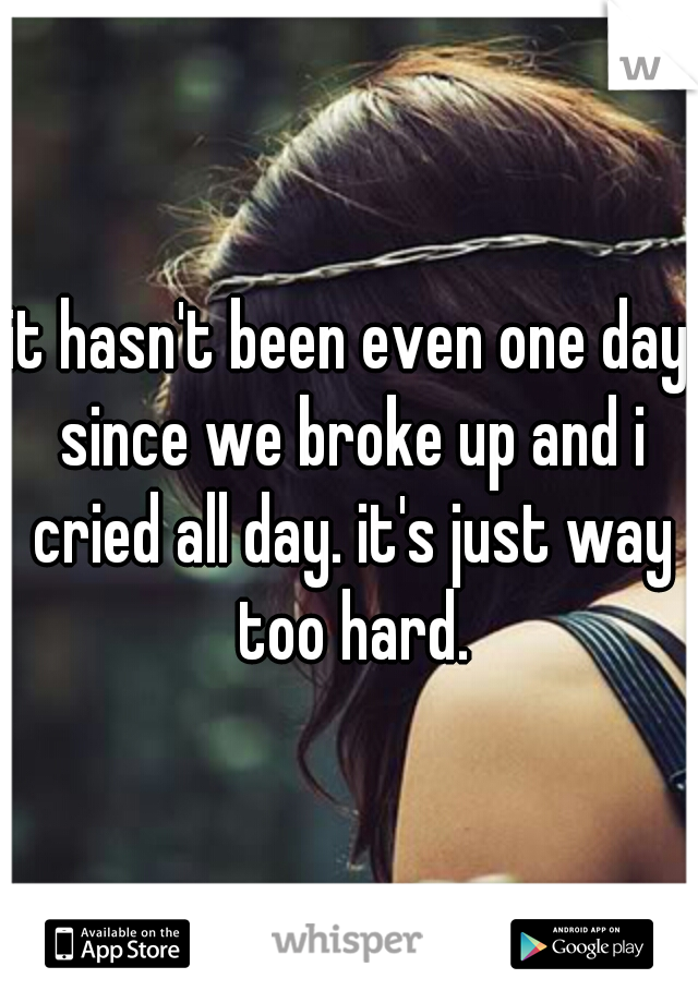 it hasn't been even one day since we broke up and i cried all day. it's just way too hard.
