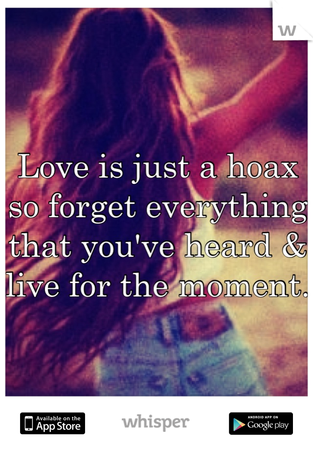 Love is just a hoax so forget everything that you've heard & live for the moment.