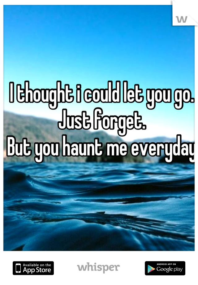 I thought i could let you go.  Just forget. But you haunt me everyday
