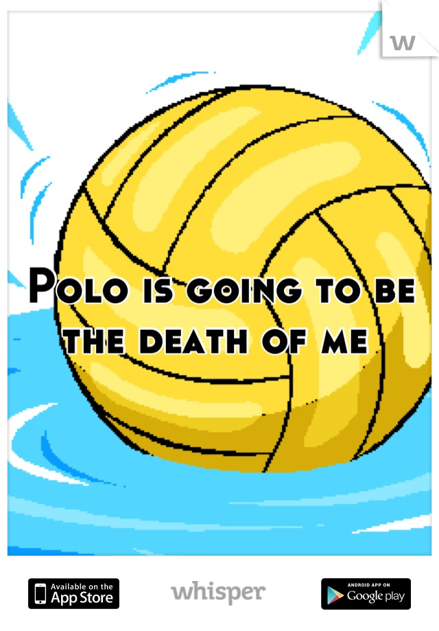 Polo is going to be the death of me