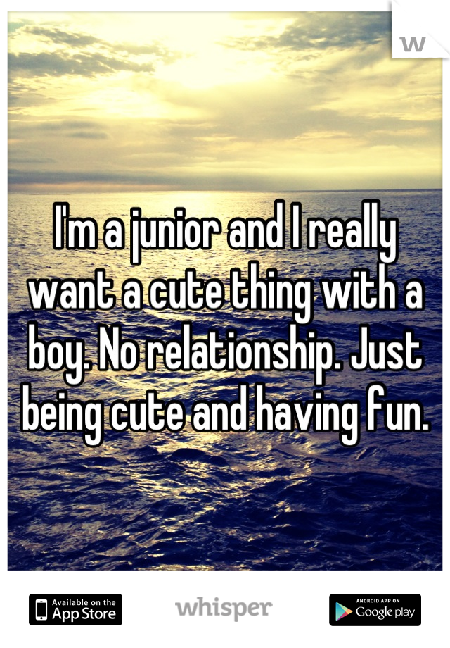 I'm a junior and I really want a cute thing with a boy. No relationship. Just being cute and having fun.