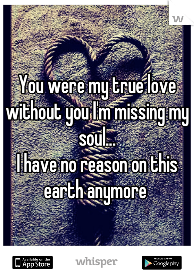 You were my true love without you I'm missing my soul...  I have no reason on this earth anymore