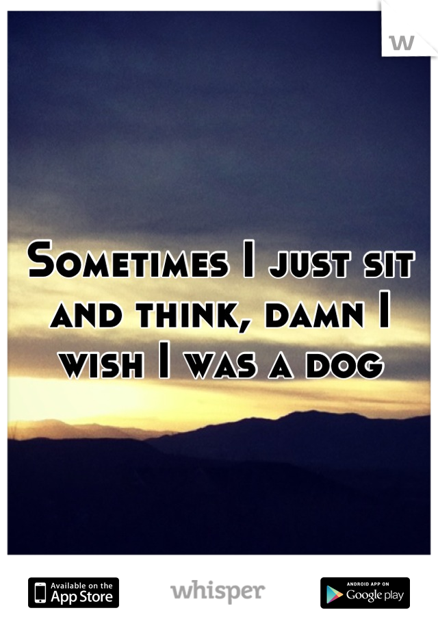Sometimes I just sit and think, damn I wish I was a dog