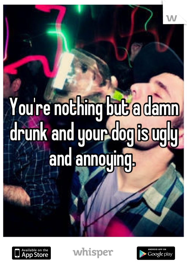 You're nothing but a damn drunk and your dog is ugly and annoying.