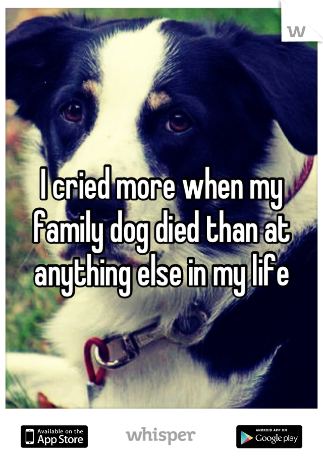 I cried more when my family dog died than at anything else in my life