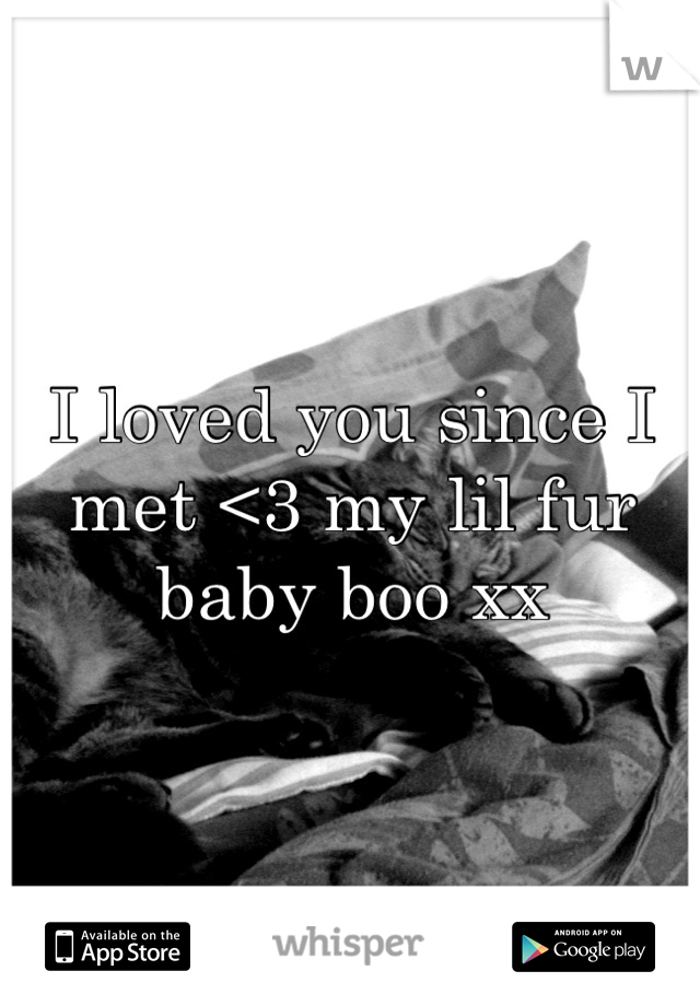 I loved you since I met <3 my lil fur baby boo xx