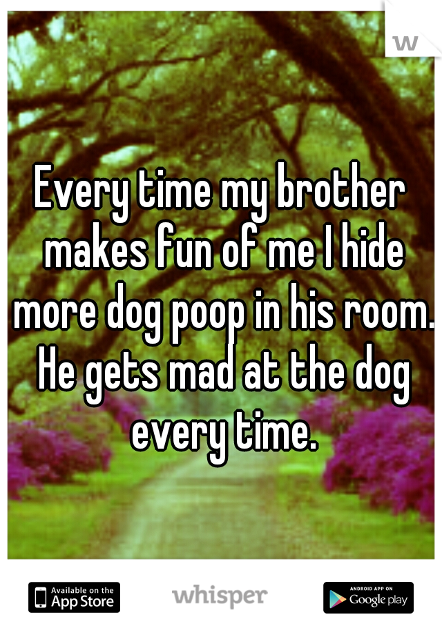 Every time my brother makes fun of me I hide more dog poop in his room. He gets mad at the dog every time.