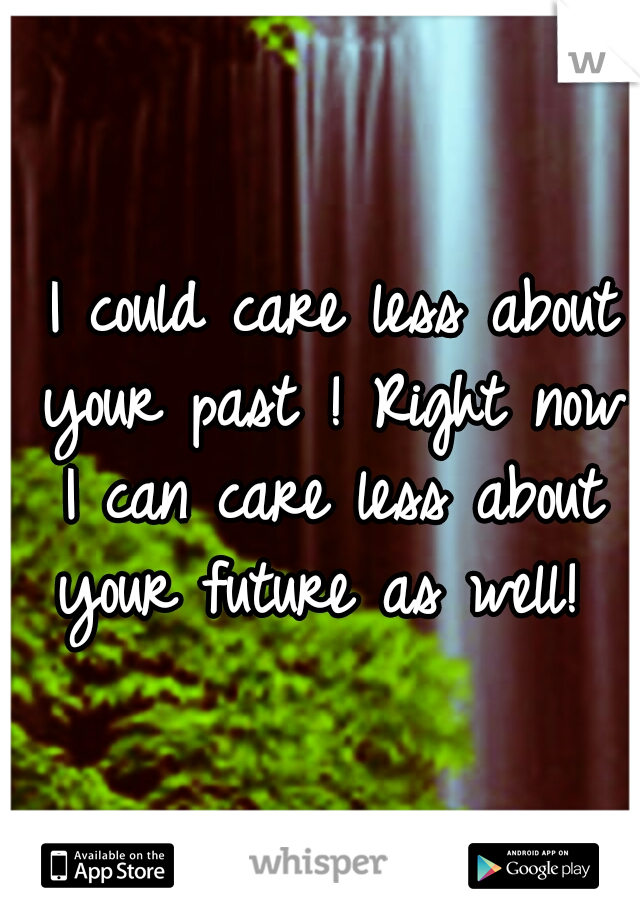 I could care less about your past ! Right now I can care less about your future as well!