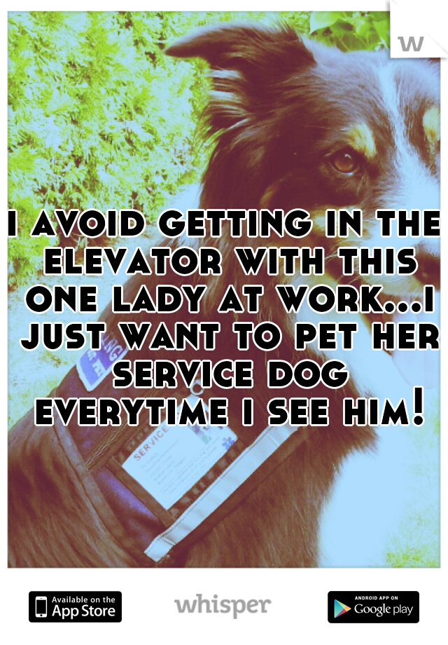 i avoid getting in the elevator with this one lady at work...i just want to pet her service dog everytime i see him!