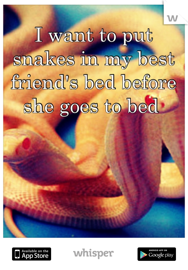 I want to put snakes in my best friend's bed before she goes to bed