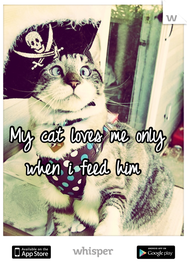 My cat loves me only when i feed him