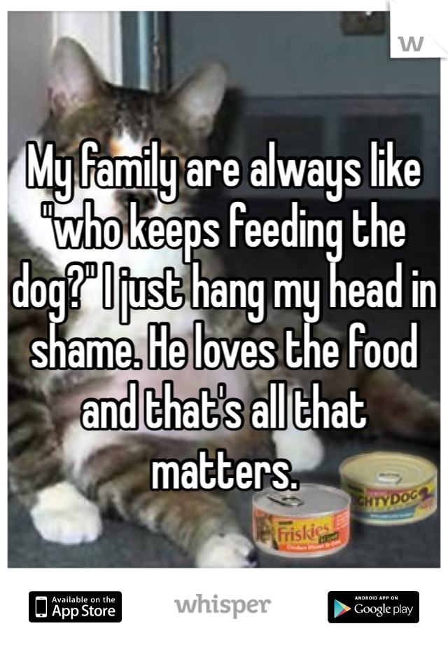 """My family are always like """"who keeps feeding the dog?"""" I just hang my head in shame. He loves the food and that's all that matters."""