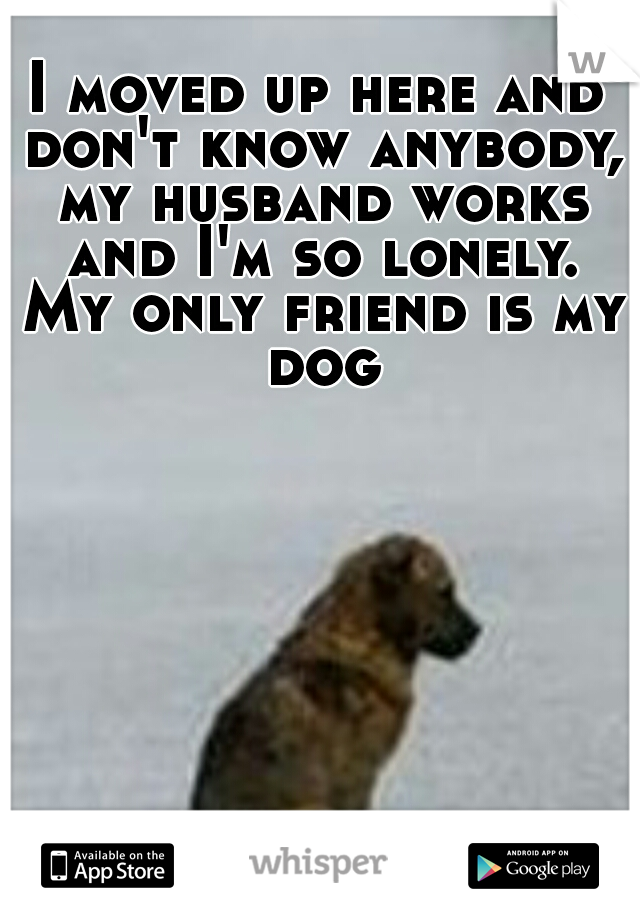 I moved up here and don't know anybody, my husband works and I'm so lonely. My only friend is my dog