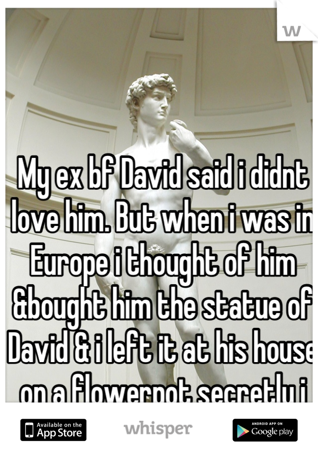 My ex bf David said i didnt love him. But when i was in Europe i thought of him &bought him the statue of David & i left it at his house  on a flowerpot secretly i wonder if he found it .....