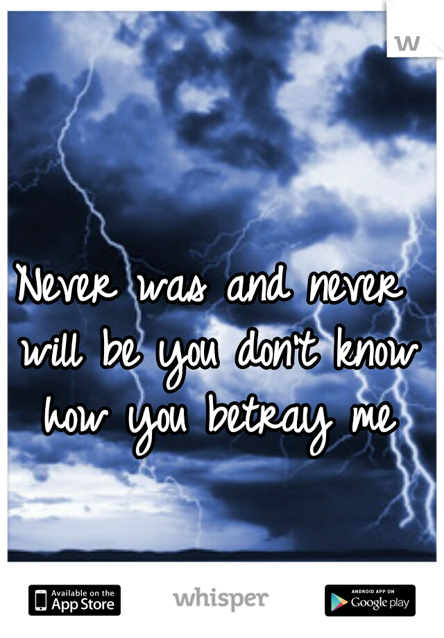 Never was and never will be you don't know how you betray me