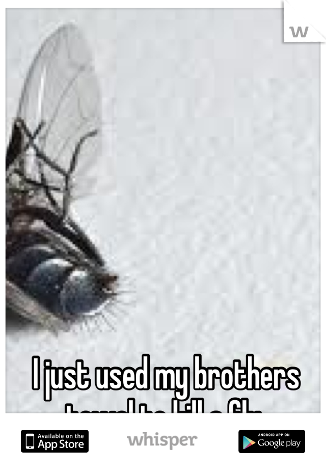 I just used my brothers towel to kill a fly