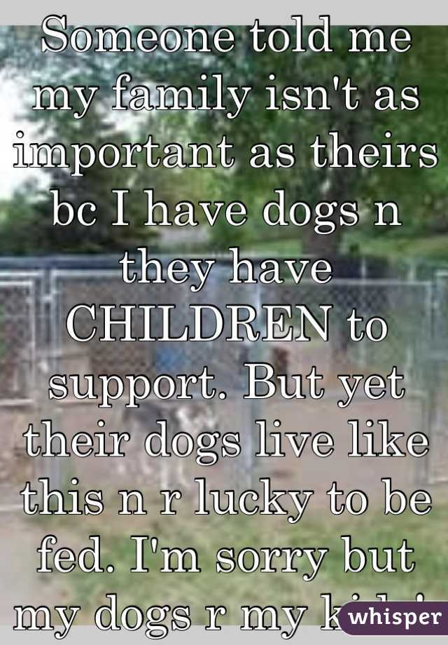 Someone told me my family isn't as important as theirs bc I have dogs n they have CHILDREN to support. But yet their dogs live like this n r lucky to be fed. I'm sorry but my dogs r my kids!