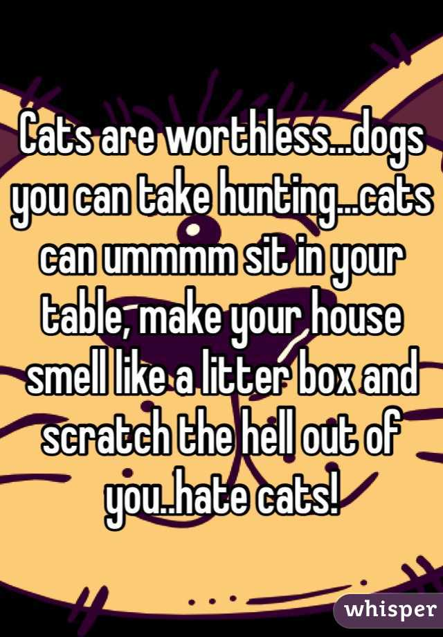 Cats are worthless...dogs you can take hunting...cats can ummmm sit in your table, make your house smell like a litter box and scratch the hell out of you..hate cats!