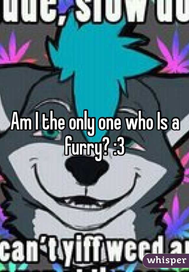 Am I the only one who Is a furry? :3