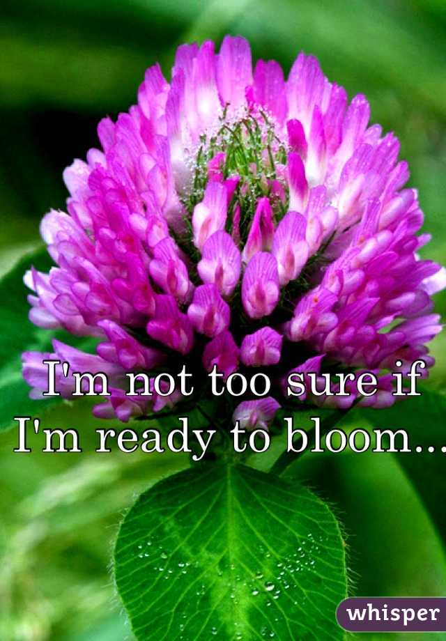 I'm not too sure if I'm ready to bloom...