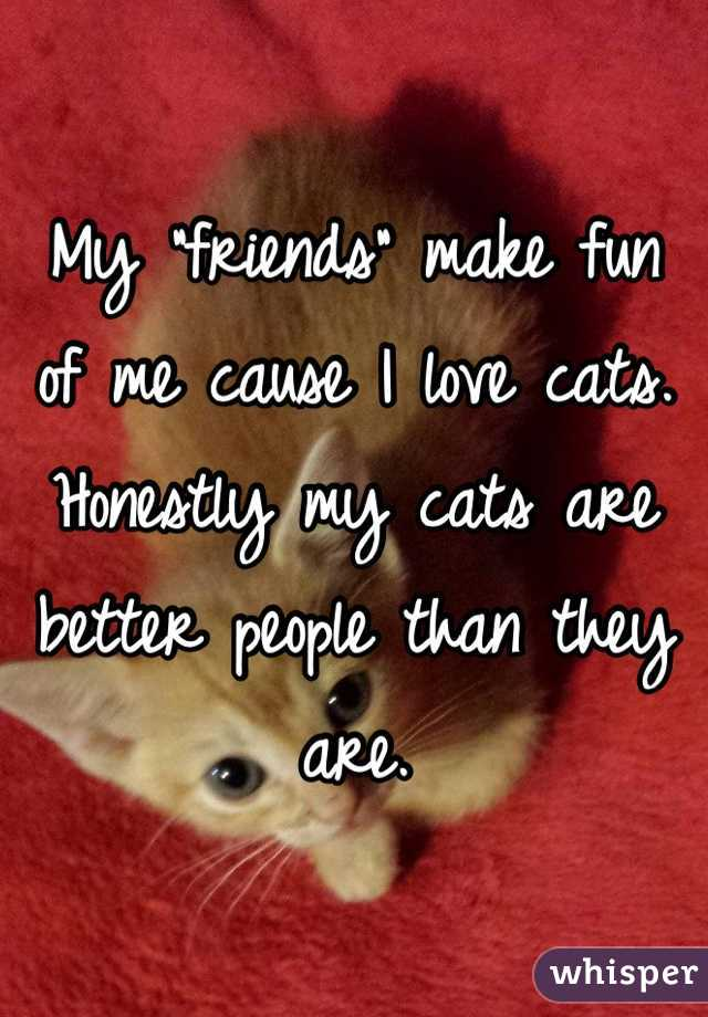"My ""friends"" make fun of me cause I love cats. Honestly my cats are better people than they are."