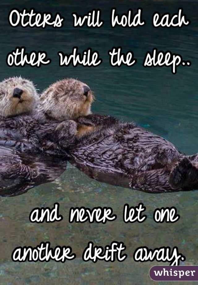 Otters will hold each other while the sleep..     and never let one another drift away.