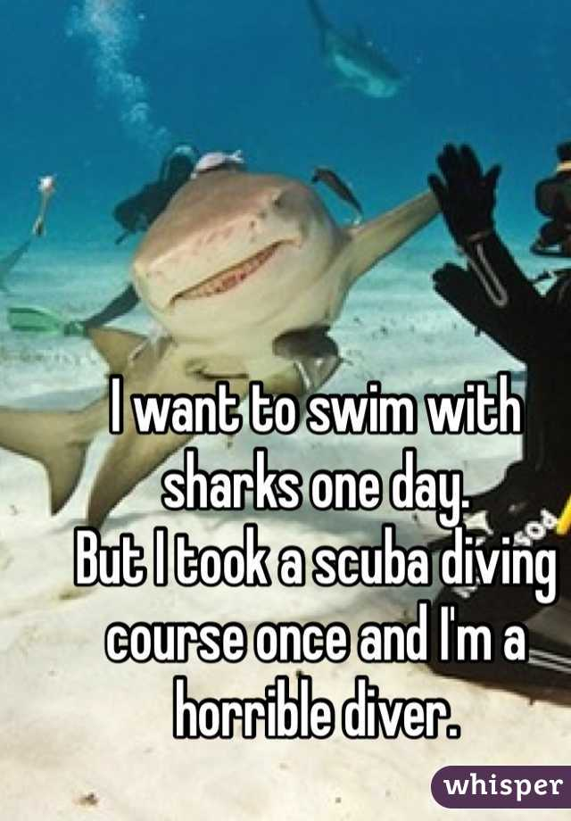 I want to swim with sharks one day. But I took a scuba diving course once and I'm a horrible diver.