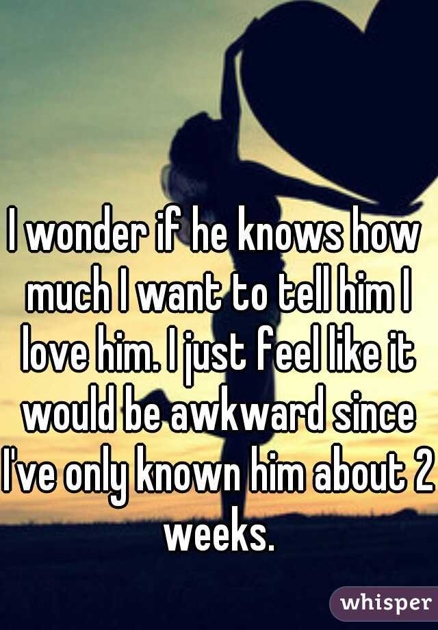 I wonder if he knows how much I want to tell him I love him. I just feel like it would be awkward since I've only known him about 2 weeks.
