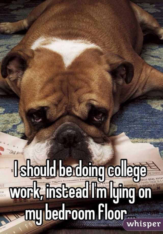 I should be doing college work, instead I'm lying on my bedroom floor...
