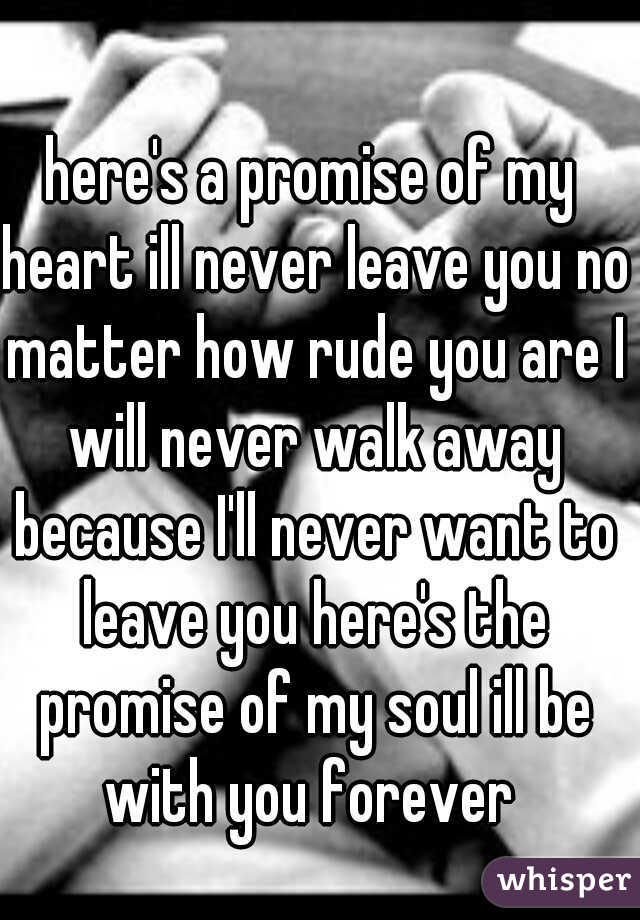 here's a promise of my heart ill never leave you no matter how rude you are I will never walk away because I'll never want to leave you here's the promise of my soul ill be with you forever