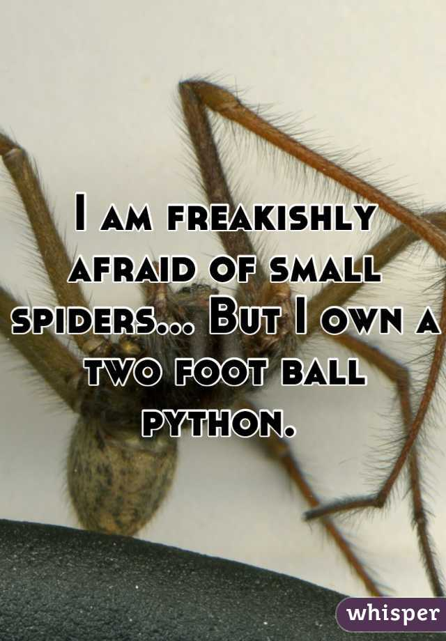 I am freakishly afraid of small spiders... But I own a two foot ball python.