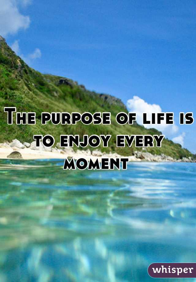 The purpose of life is to enjoy every moment