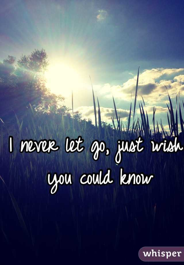 I never let go, just wish you could know
