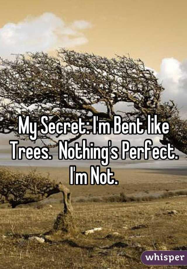 My Secret: I'm Bent like Trees.  Nothing's Perfect.  I'm Not.