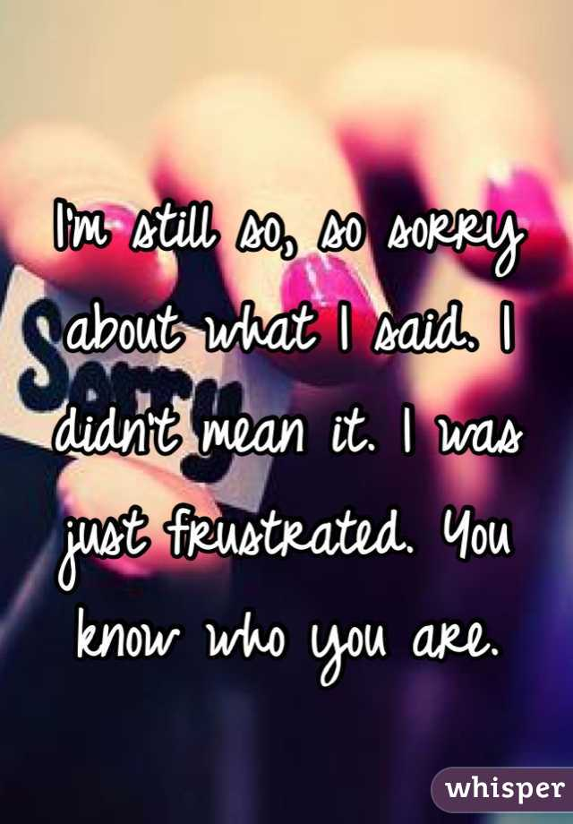 I'm still so, so sorry about what I said. I didn't mean it. I was just frustrated. You know who you are.