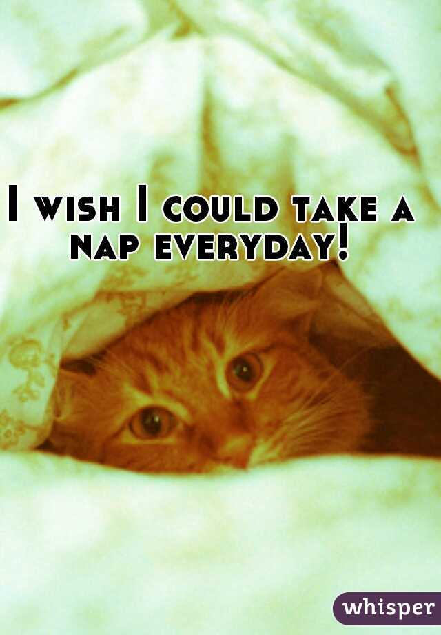 I wish I could take a nap everyday!