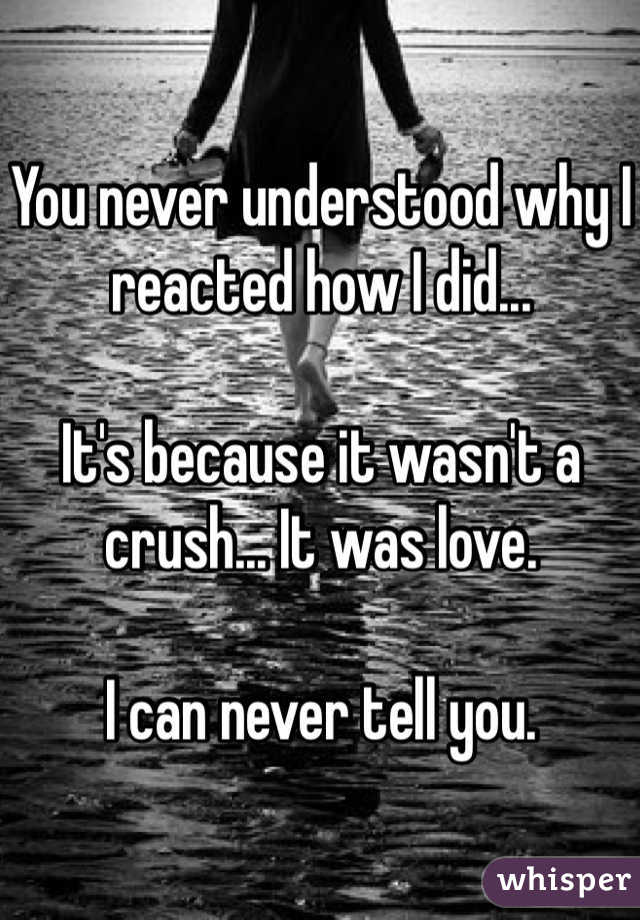 You never understood why I reacted how I did...   It's because it wasn't a crush... It was love.   I can never tell you.