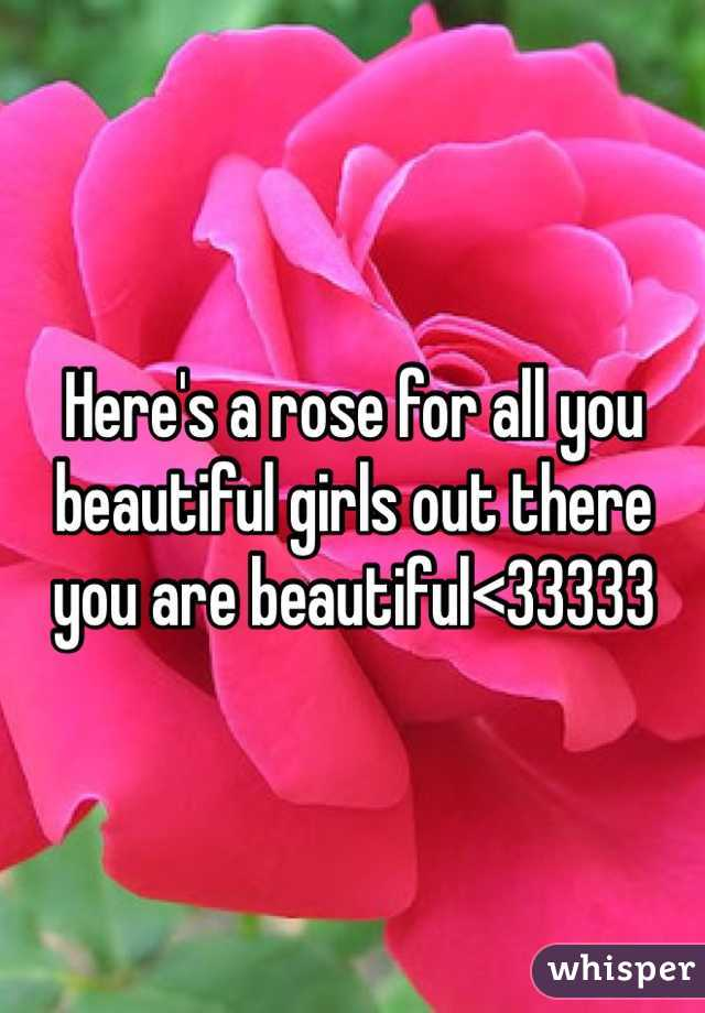 Here's a rose for all you beautiful girls out there you are beautiful<33333