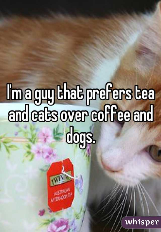 I'm a guy that prefers tea and cats over coffee and dogs.