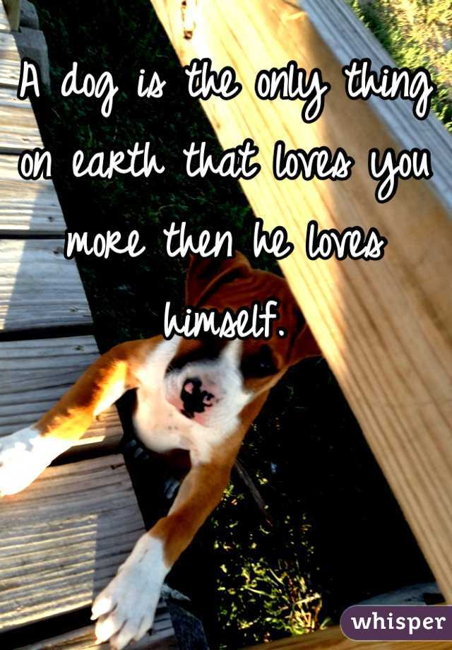 A dog is the only thing on earth that loves you more then he loves himself.