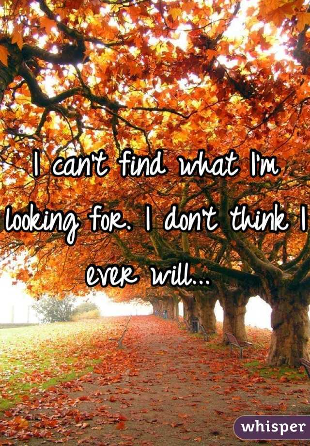 I can't find what I'm looking for. I don't think I ever will...